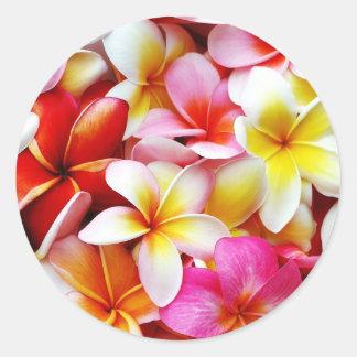 Plumeria Frangipani Hawaii Flower Customized Round Sticker