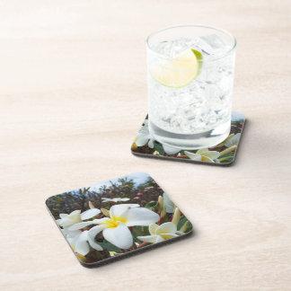 Plumeria Hard Plastic Coasters
