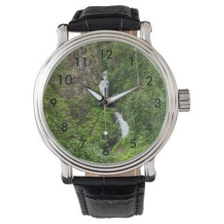 Plush Thunderbird Painterly Watch