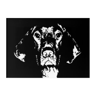 Pointer Black & White Acrylic Wall Art