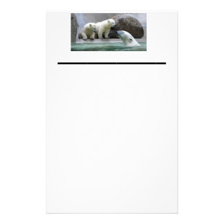"Polar Bear 5.5"" x 8.5"" stationery"