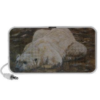 Polar Bear Doodle Speakers