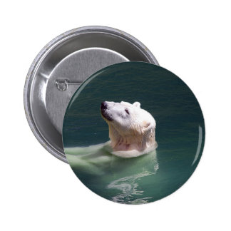 Polar bear resting 6 cm round badge