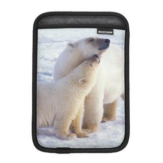 Polar bear sow with cub, pack ice of the iPad mini sleeve