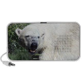 Polar Bear Speaker