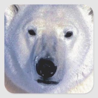 Polar Bear Square Sticker