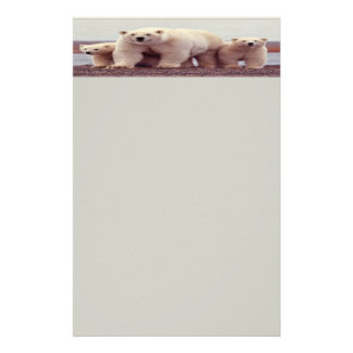 Polar bear Stationery