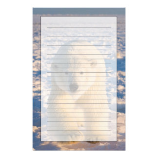 polar bear, Ursus maritimus, polar bear on ice Stationery