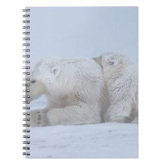 polar bear, Ursus maritimus, sow with cub Spiral Notebook
