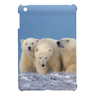 polar bear, Ursus maritimus, sow with cubs iPad Mini Cover
