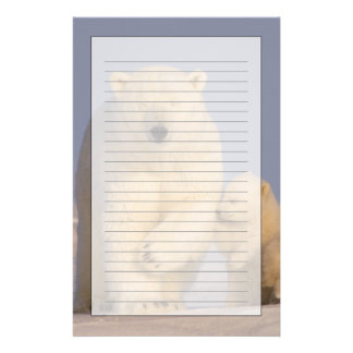 polar bear, Ursus maritimus, sow with newborn 3 Stationery