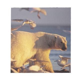 polar bear, Ursus maritimus, with Notepad