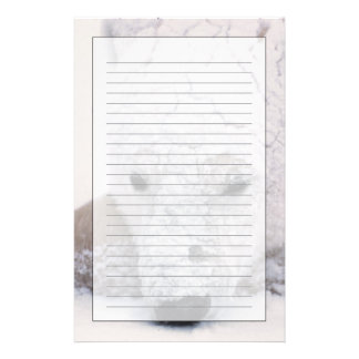 Polar Bear, Urus Maritimus, Arctic, Churchill, Stationery