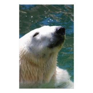 Polar bears smile stationery
