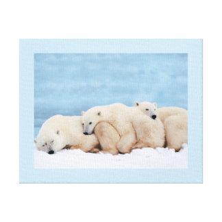 Polar Bears Wrapped Canvas