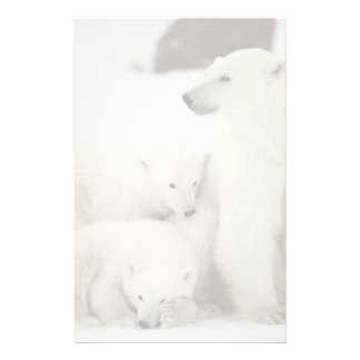 Polar She-bear With Cubs Stationery