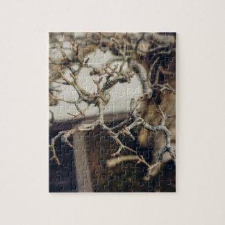 Pomegranate bonsai branches jigsaw puzzle