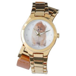 Pomeranian Watch