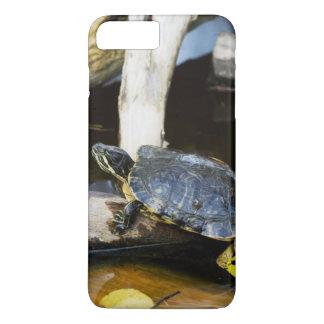 Pond slider turtle in the wild iPhone 7 plus case