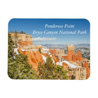 Ponderosa Point, Bryce Canyon National Park Magnet