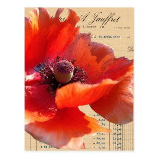 Poppy and Ephemera Digital Art Postcard