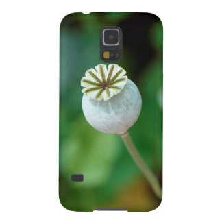 Poppy Flower Head Seed, Western Cape Galaxy S5 Cover