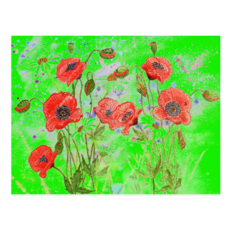 Poppy Green Postcard
