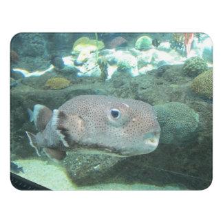 Porcupine Fish Close Door Sign