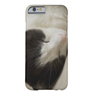 Portrait detail of a domestic cat sleeping barely there iPhone 6 case