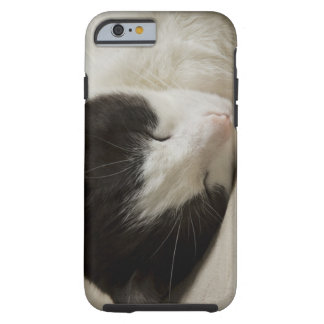 Portrait detail of a domestic cat sleeping tough iPhone 6 case