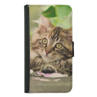 Portrait Maine Coon cat kitten Samsung Galaxy S5 Wallet Case