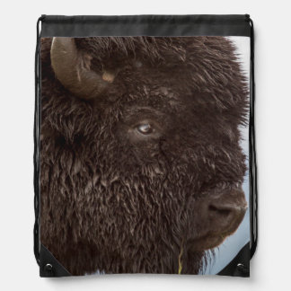 Portrait Of A Bison Bull In The Rain 2 Drawstring Bag