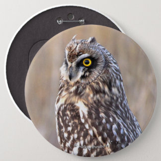 Portrait of a Short-Eared Owl 6 Cm Round Badge