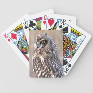 Portrait of a Short-Eared Owl Bicycle Playing Cards