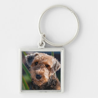 Portrait of an Airedale Terrier 1 Silver-Colored Square Key Ring
