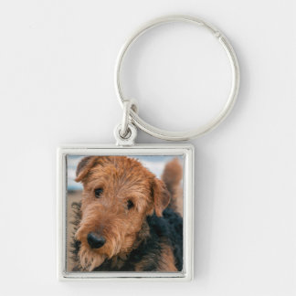 Portrait of an Airedale Terrier 2 Key Ring