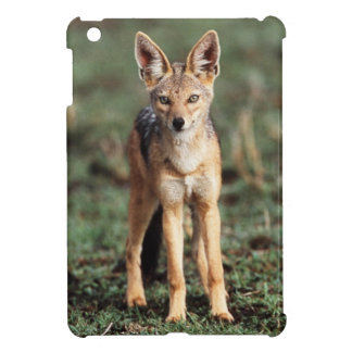 Portrait of Black-Backed Jackal iPad Mini Case