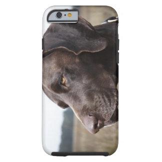 Portrait of Dog, Houston, Texas, USA Tough iPhone 6 Case