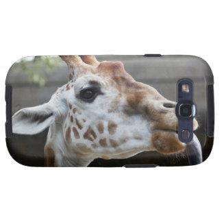 Portrait of Giraffe (Giraffa camelopardalis) Galaxy SIII Case