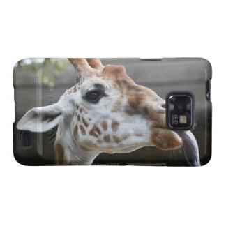 Portrait of Giraffe (Giraffa camelopardalis) Samsung Galaxy S2 Case
