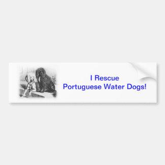 Portuguese Water Dog Bumper Sticker
