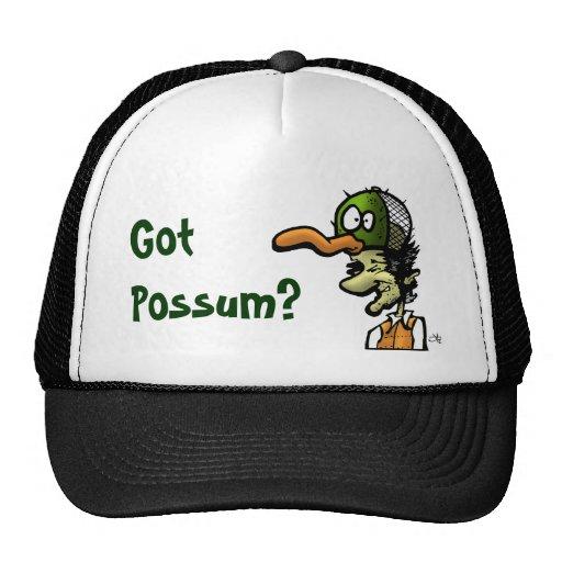 Possum, Got Possum? Mesh Hat