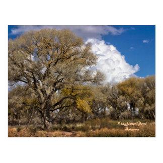 Postcard: Clouds Over Kingfisher Pond #2 Postcard