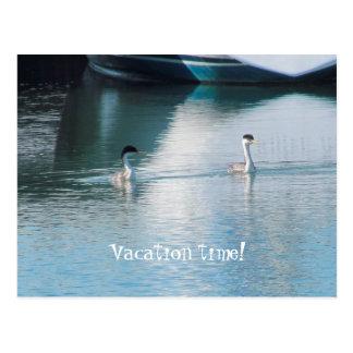 Postcard - Cruise Vacation