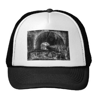 Postcard Falls in Black and White Trucker Hat