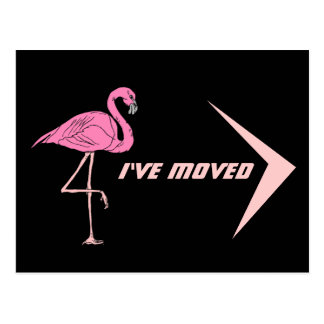 Postcard Flamingo I've Moved New Address PC Retro