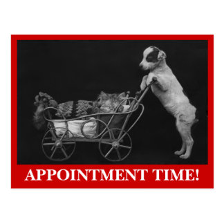 Postcard Pets Sweet Cat & Dog Appointment Reminder