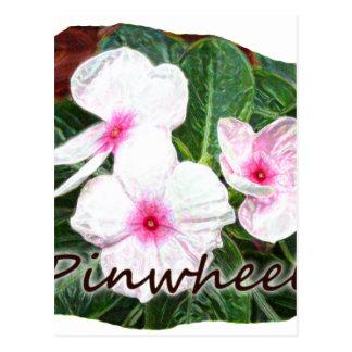 Poster Purple Pinwheel Flowers w text Postcard