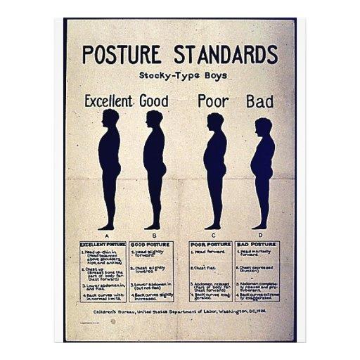 Posture Standards Flyers