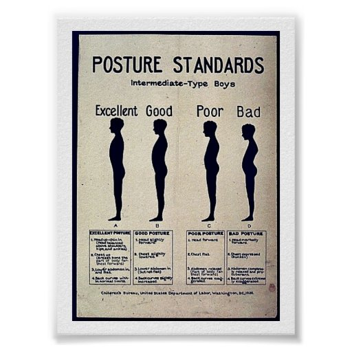 Posture Standards Poster